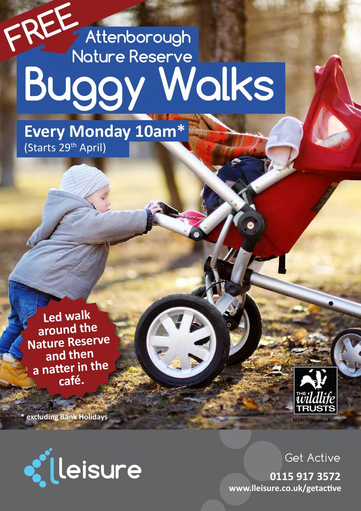 Buggy Walks